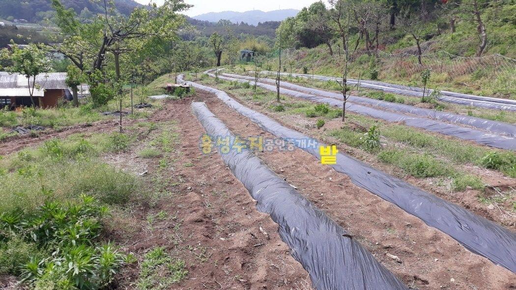 마을 맨 뒷 쪽 저렴하게 나온 농가주택과 커다란 토지