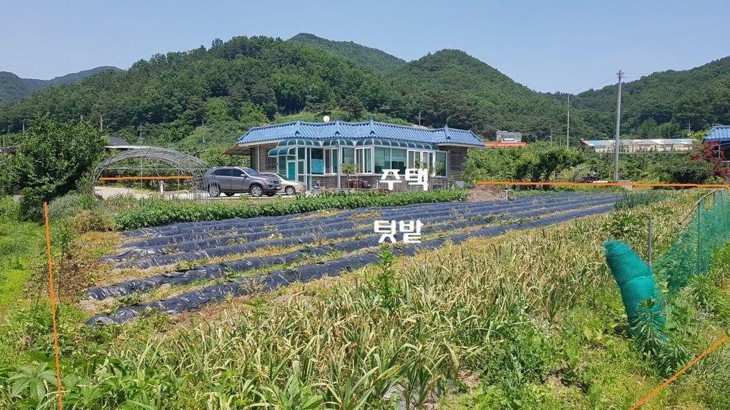조용한 마을에 좋은 터에 시골 부잣집과 밭이 좋습니다.