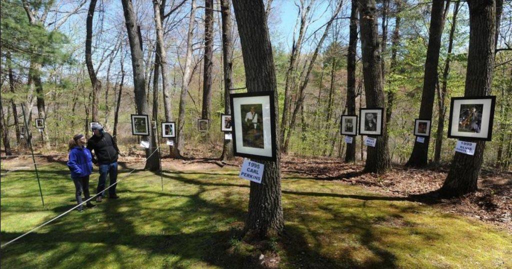 코로나19 시대의 사진 전시 방식. 야외나 숲에서 하는 사진전
