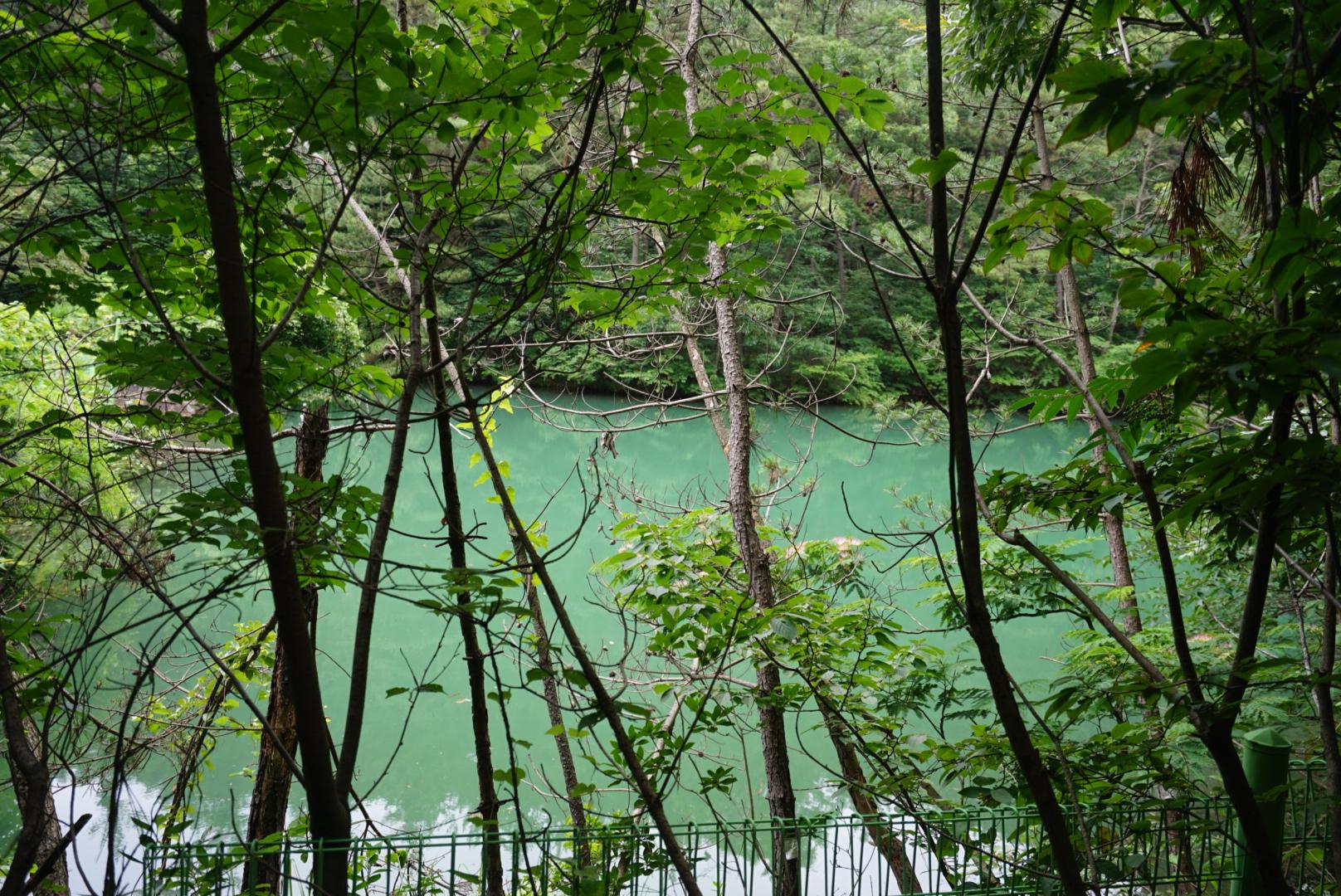 충남 서천의 휴양림 희리산 사방댐
