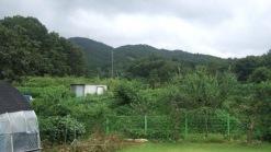 독립적인 농가주택