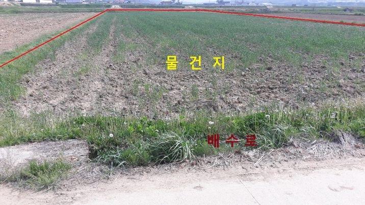 경지정리 된 농사 지을 땅입니다
