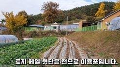서너가구가 옹기종기 모여사는 조용한 마을 상단부의 토지