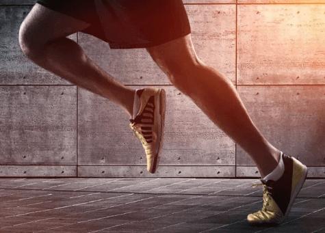 운동과근육