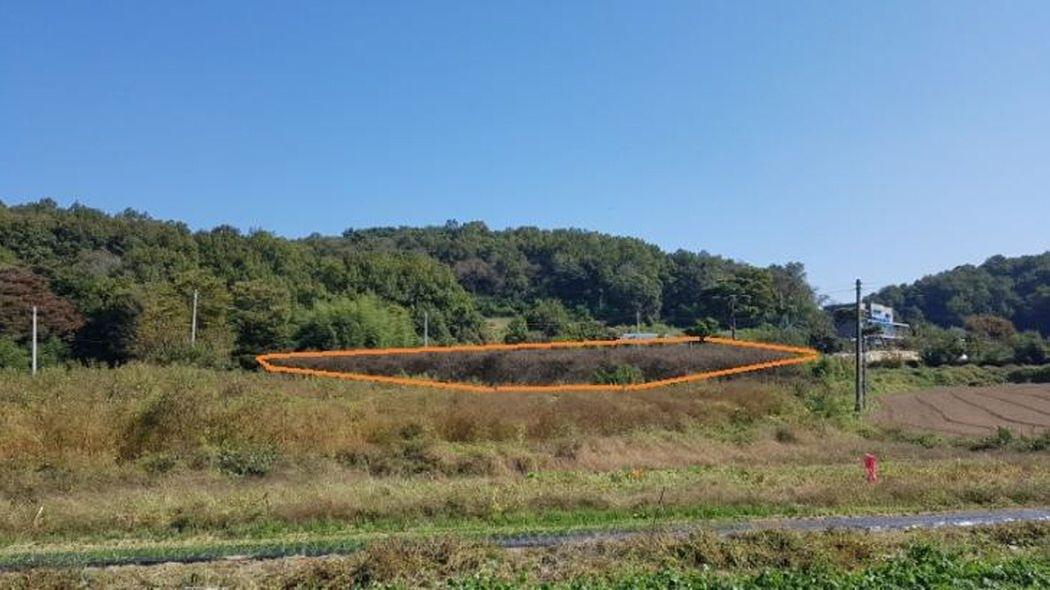 산자락 정남향 땅 714평 계획관리지역