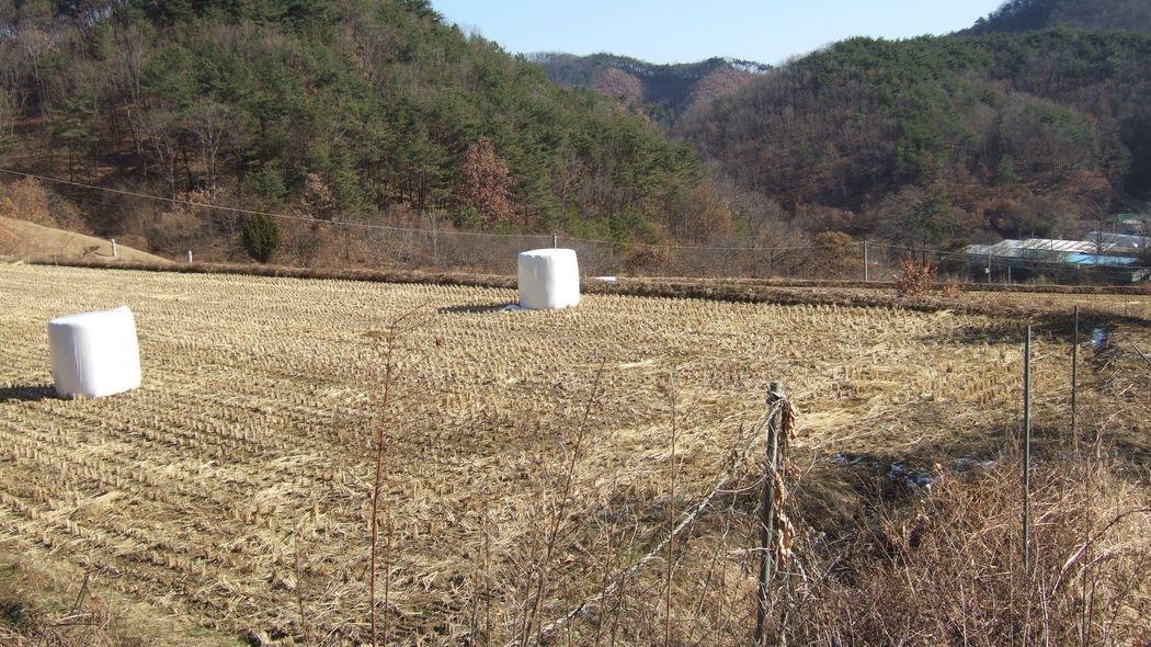 귀농,연수원,전원주택지(배산임수)