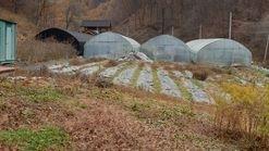 국유림 산자락밑에 남향으로 위치한 전원주택지/주말농장부지 토지