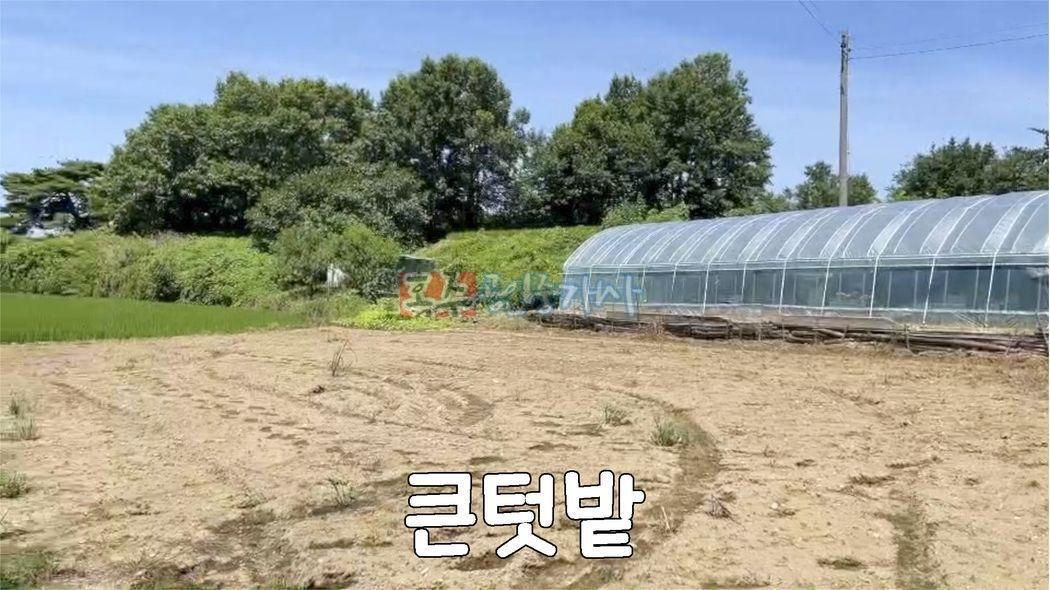 저렴한 가격 농지원부 가능 귀농 할 분, 주말 주택 농장용 추천