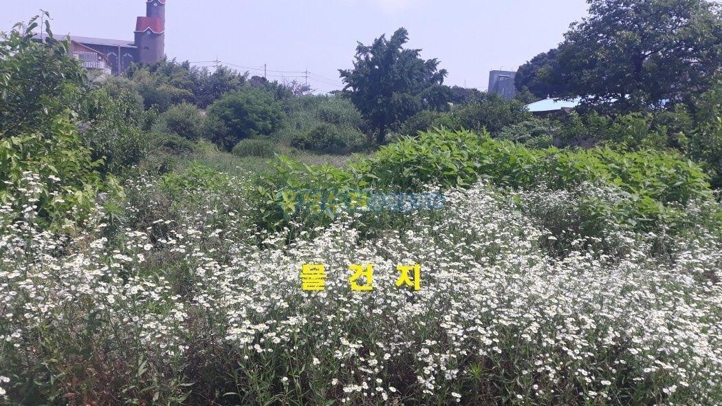 내포신도시 앞, 읍 소재지에 용도 다양한 계획관리지역 토지