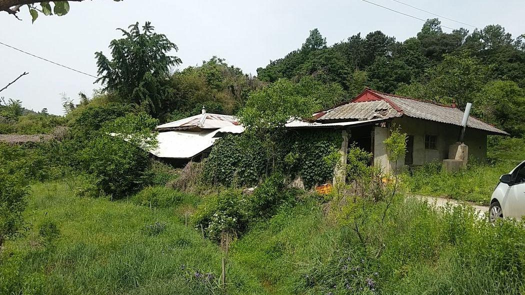숲속 한적한 농가주택