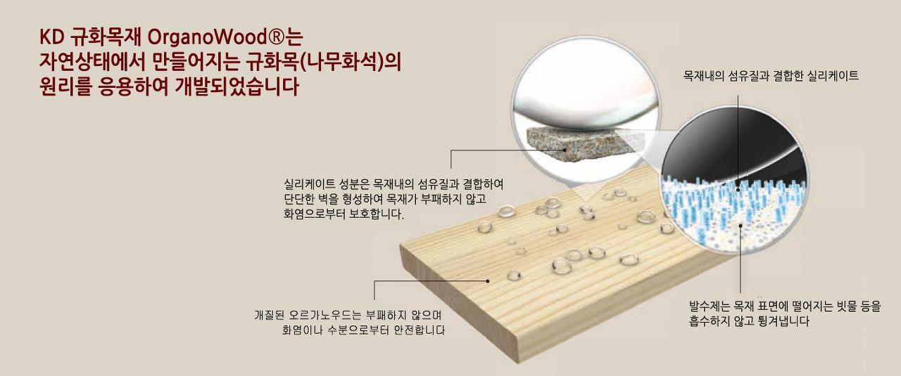 새로운 개질목재 - 규화처리목