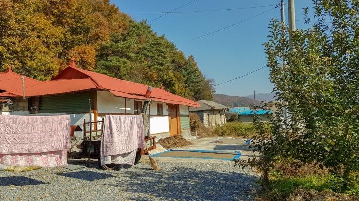 마을내 자리한 조용하고 한적한 농가주택과 텃밭