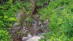 산 아래 저수지를 바라보는 조용한 환경의 전원주택지