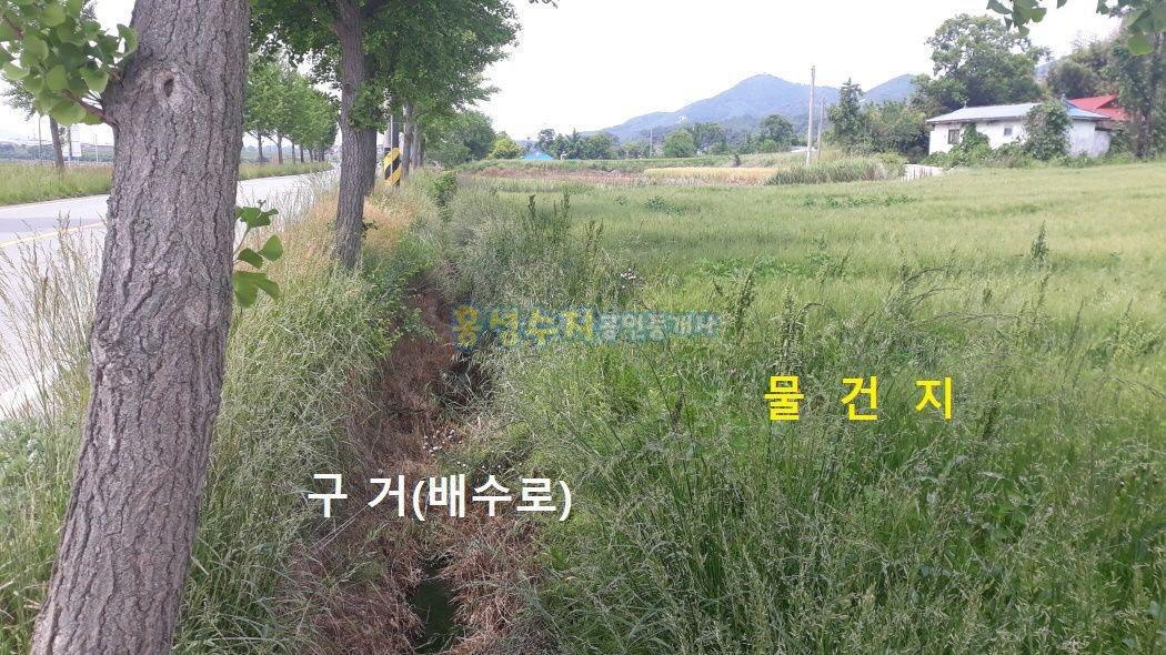 수덕사 다니는 길목, 2차선에 접해 있는 적당한 크기의 토지