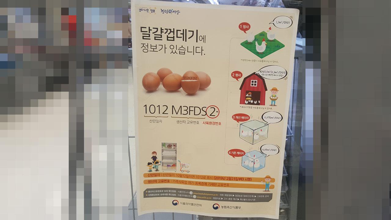 계란껍데기정보