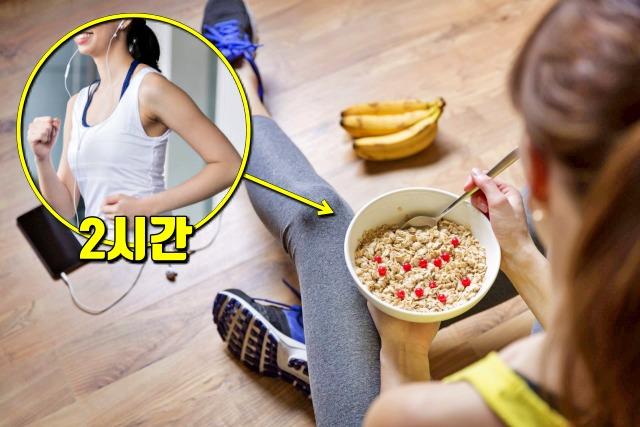운동후 단백질 섭취 시간, 다이어트, 건강