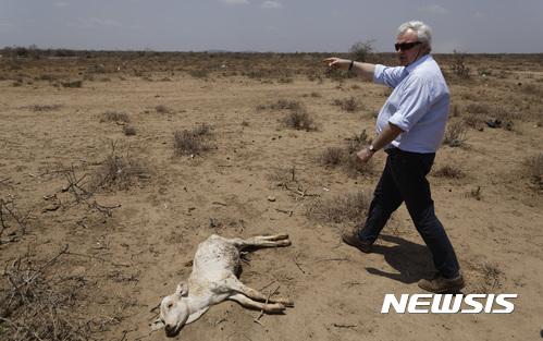 에티오피아, 하루에 3억5000만 그루 나무 심어 '신기록'