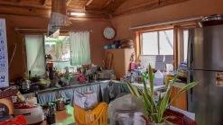 마을 상단부에 자리한 조용하고 한적한 전원주택과 텃밭