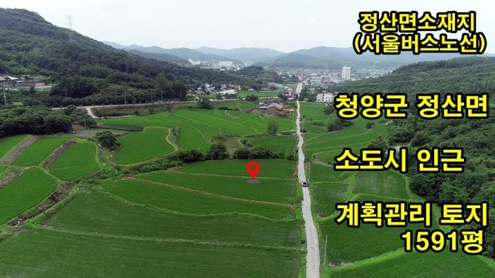면소재지(소도시)인근 시세반값(철탑있음) 계획관리 토지