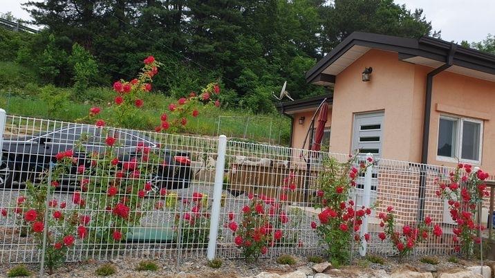 지은지 얼마 안되는 주택으로 관리가 잘된 작은주택