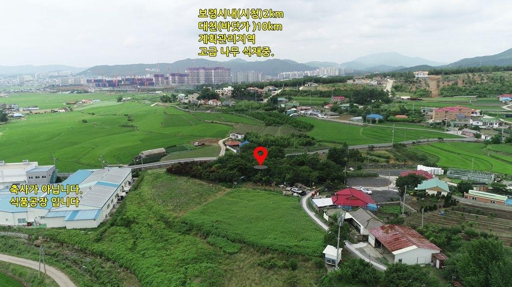 보령시대천(바닷가)가 가까운, 계획관리. 정원수 매매가 포함