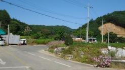 도시지역[홍천읍갈마곡리380/1외139필지]골프장거래임박