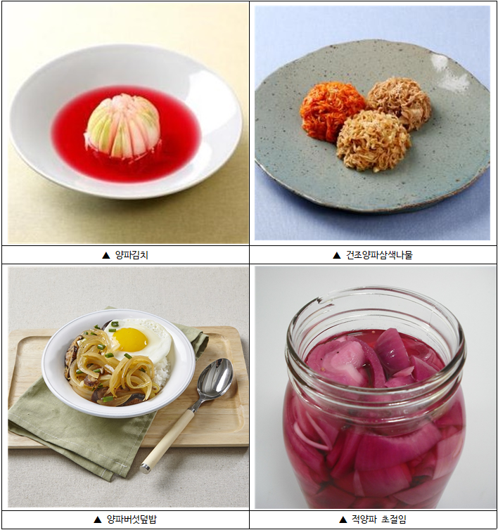 햇양파 수확 시기를 맞아, 김치·덮밥· 절임 등 활용 요리법 소개
