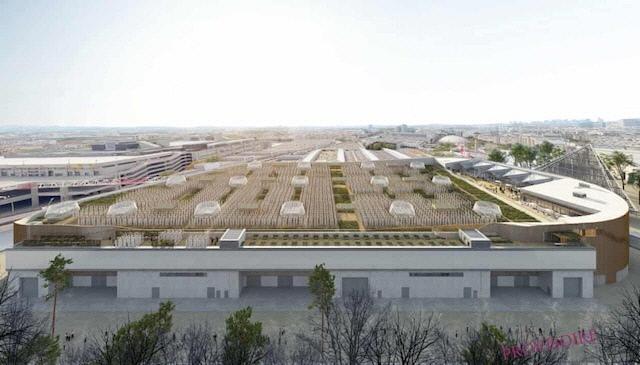[착한 뉴스]파리에 세계 최대 '지붕 농장' 생긴다
