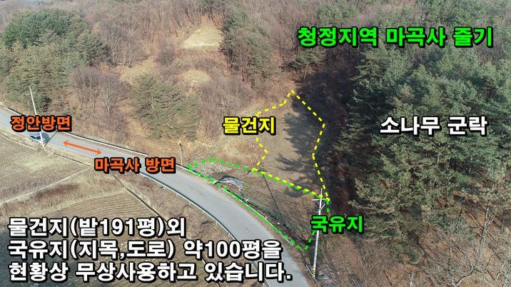 마곡사 줄기, 계획관리 밭 191평+국유지 100평 무상사용