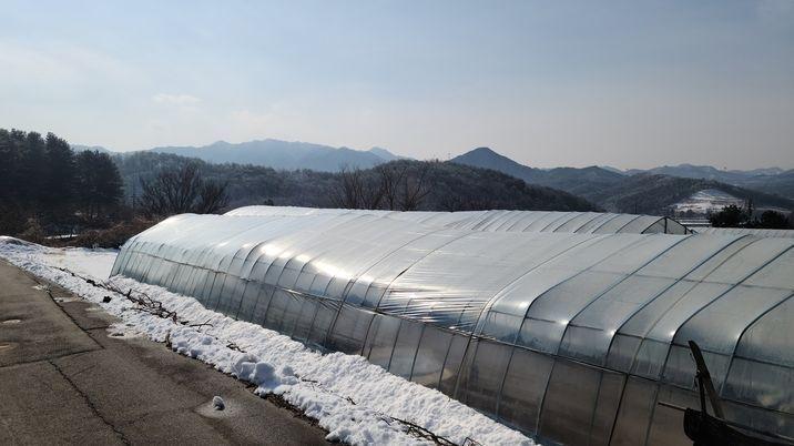 경기도양평군과접한동내 작은토지로 혐오시설 없는토지 300평