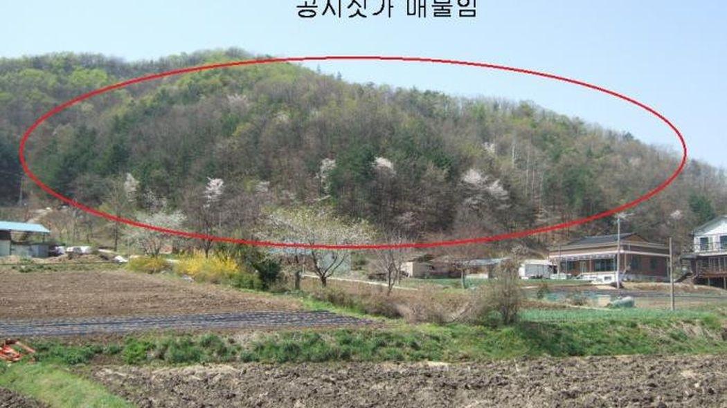 주말농장,특수작물