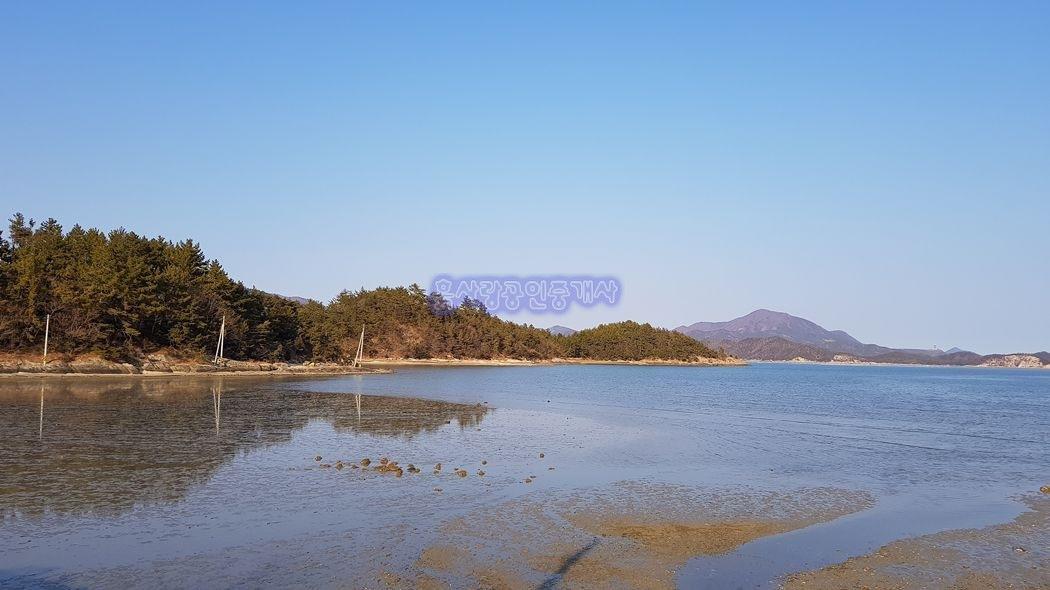 바닷가 섬 속 공기좋고, 환경 좋은곳에 힐링 가득한 캠핑장 부지