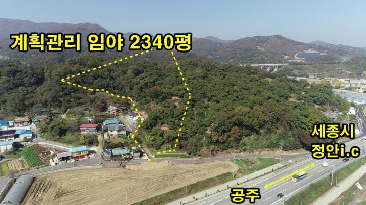 관리지역 임야(2340평) 정남향의 전원주택단지 개발가능