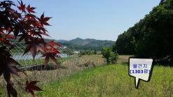 남, 동향을 바라보는 사진