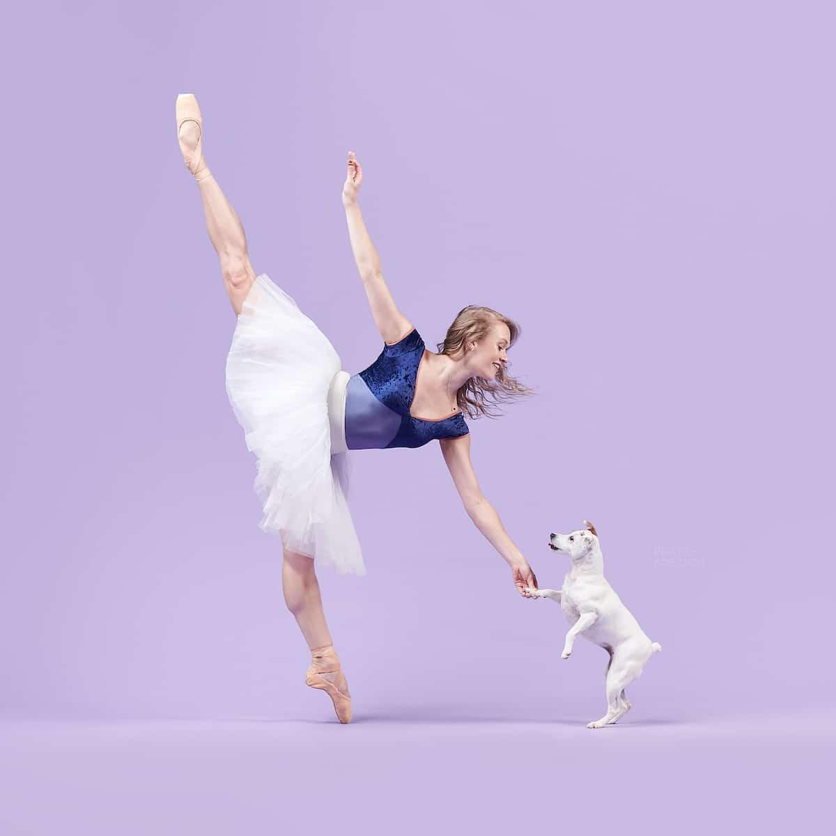 댄서와 강아지의 아름다움을 담은  Dancers와 Dogs 사진시리즈