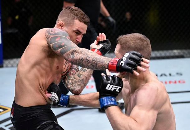UFC on ESPN12 이후 예상가능한 매치메이킹 - 더스틴 포이리에 VS 토니 퍼거슨?
