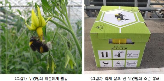 화분매개곤충 이용 시 농약의 안전한 사용법