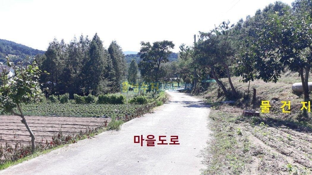 마을 맨 안쪽 산자락 밑에 농가주택과 넓직한 토지