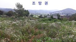 백월산 바로 밑 남서향 전망 좋은 곳,전원주택용 토지 급매물