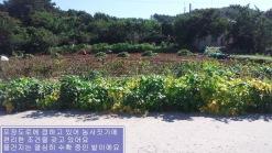 4차선 도로변 매물(주유소, 식당, 공장 추천)