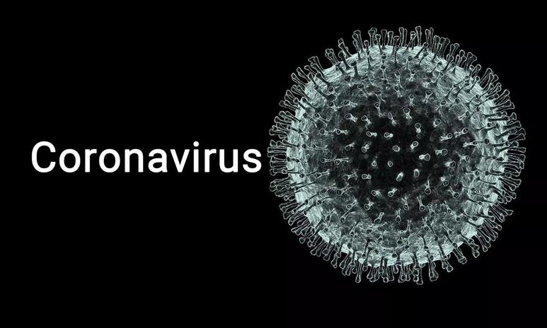 코로나 바이러스 현황 사이트 그리고 바이러스 영화들