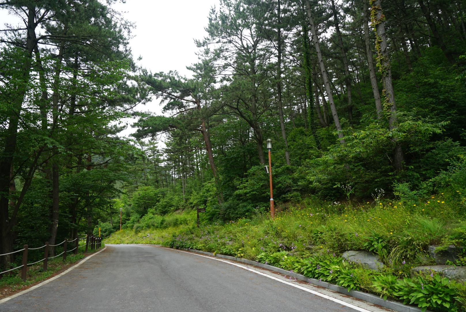희리산 자연 휴양림 산책