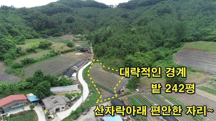 욕심나는 땅!! 마을 끝자락 아담한 평수.. 242평