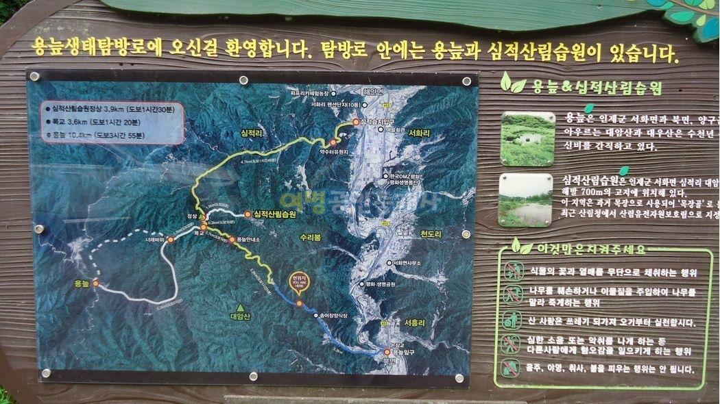 국유림속나홀로위치한별장겸캠핑장[1급수계곡]
