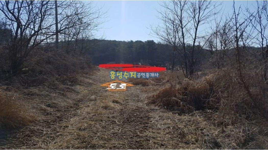 산자락에 숲속 아늑한  1227평 싸고좋은 땅~