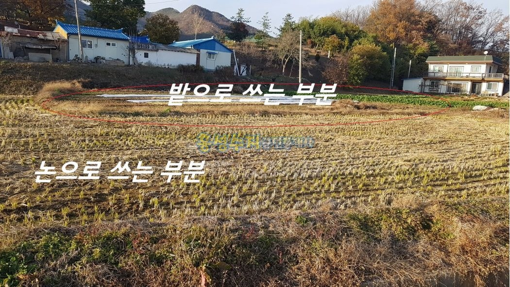 교통 좋고 인심 좋은 마을에 싸고 좋은 땅입니다.