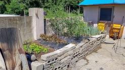 산이 감싸주는 마을끝자락에 자리한 저렴한 금액의 아담한 농가주택