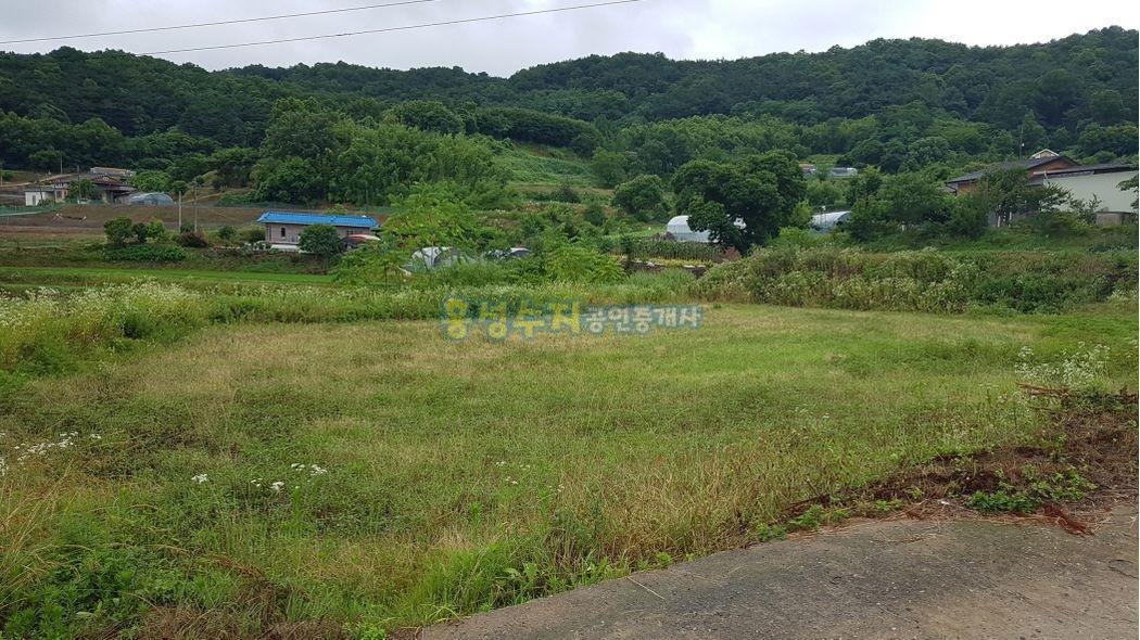 조용한 마을 약간 높은 지대, 싸고 좋은 토지 입니다.