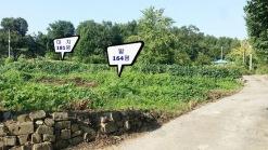 400년 된 우물을 간직한 토지