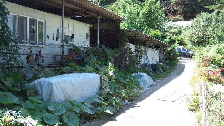 목장용지와 주택,텃밭(소규모로 가축 가능)